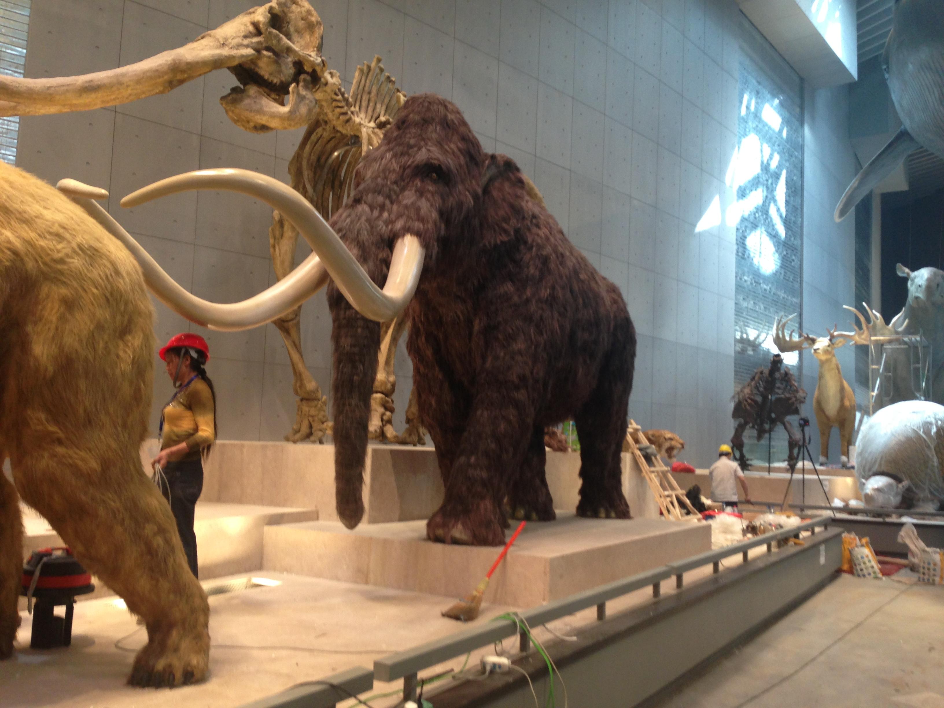 猛犸象动物雕塑