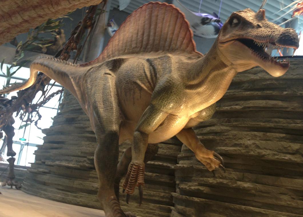 11m长恐龙玻璃钢雕塑