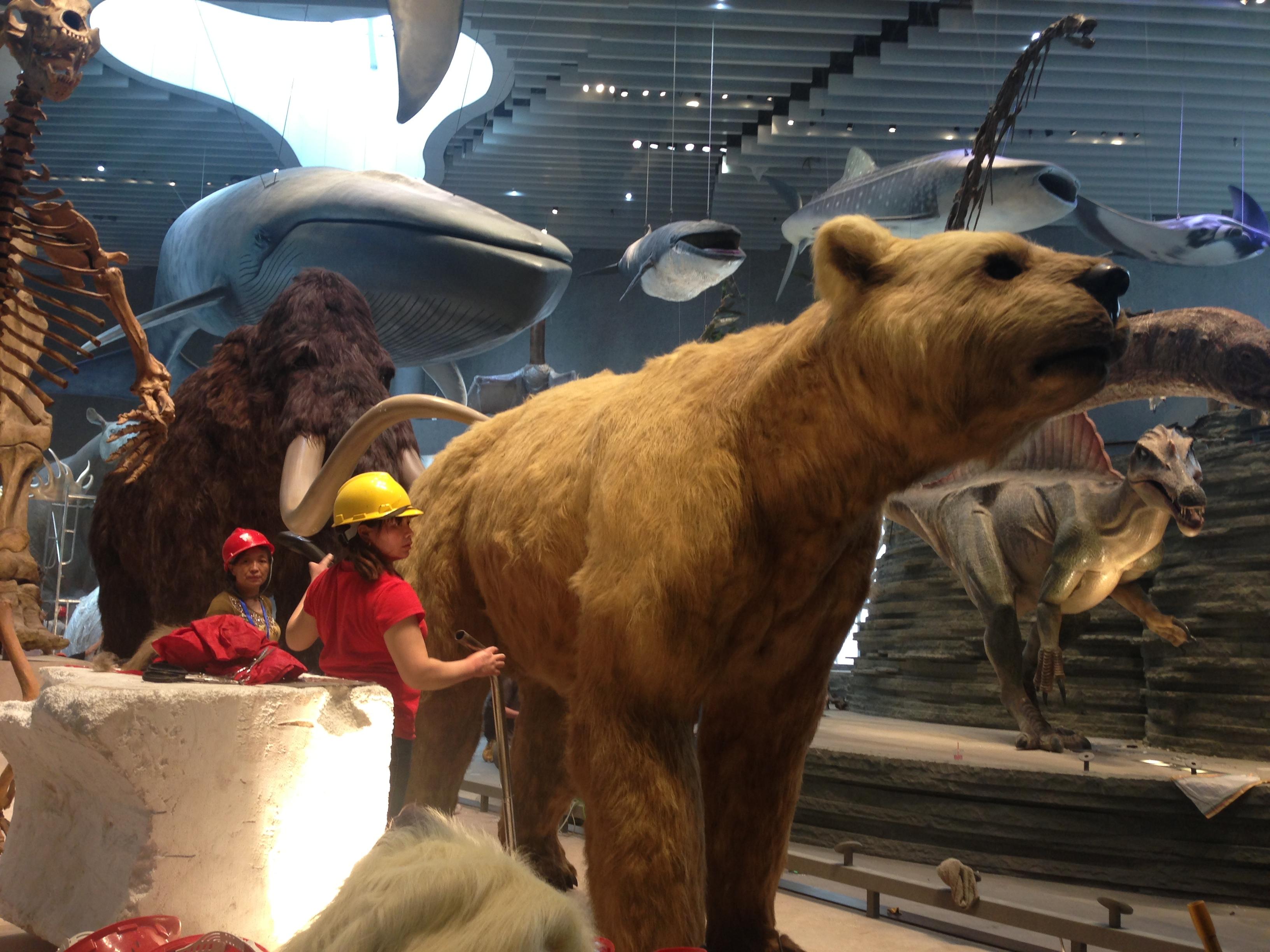 上海自然博物馆雕塑